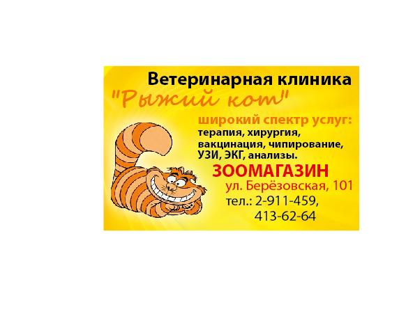 6240060712.jpg